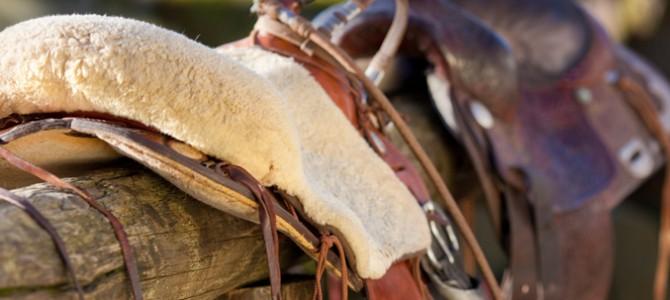 La lavorazione del cuoio e la cultura del cavallo