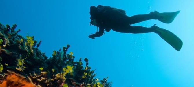 Mer cristalline et limpide, l'idéal pour la plongée
