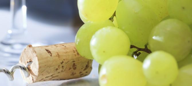 Terres fertiles et soleil: les secrets du vin sarde