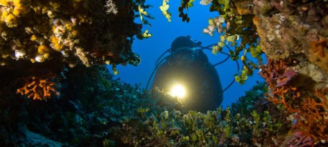 La mer de la Sardaigne, idéale pour les amateurs de plongée