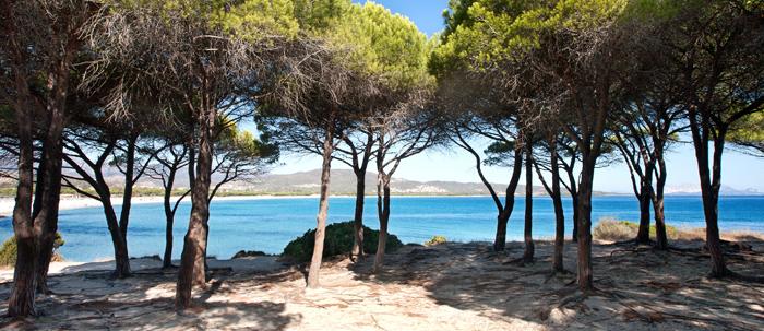 Spiaggia cala di budoni budoni provincia di olbia tempio for Budoni mare
