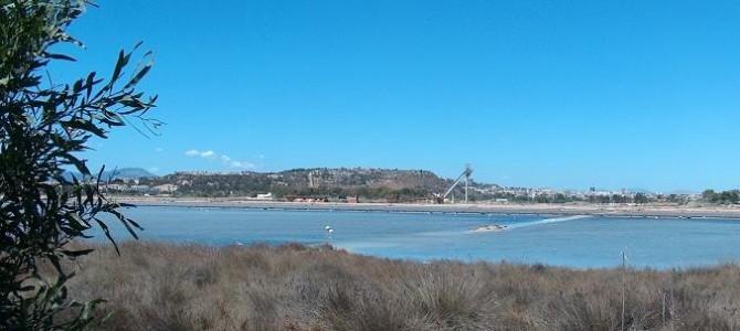 Le Saline di Cagliari e il Parco Regionale Molentargius