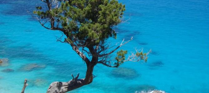 4 trekking in Sardegna, tra Supramonte e Golfo di Orosei