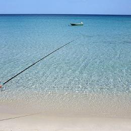 Case vacanze in Sardegna offerte e last minute | Sardegne.com